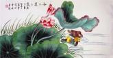 凌雪 三尺横幅 国画花鸟画《和和美美》9-5 荷花鸳鸯