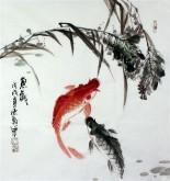 石云轩 国画写意花鸟画 三尺斗方《鱼戏》双色鲤鱼12-4