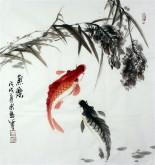 石云轩 国画写意花鸟画 三尺斗方《鱼乐》双色鲤鱼12-3