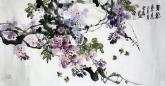 石云轩 国画花鸟画 三尺横幅《紫气东来》紫藤201-6